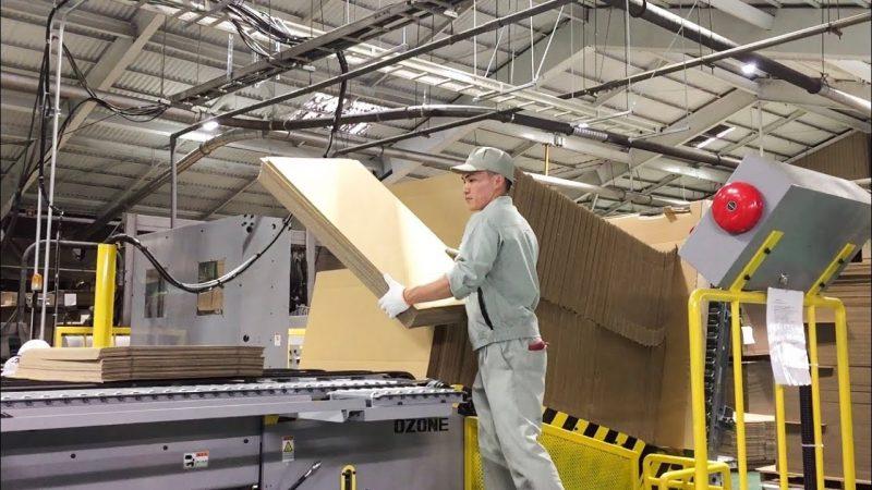 Top 10 nhà máy sản xuất giấy uy tín, chất lượng hiện nay